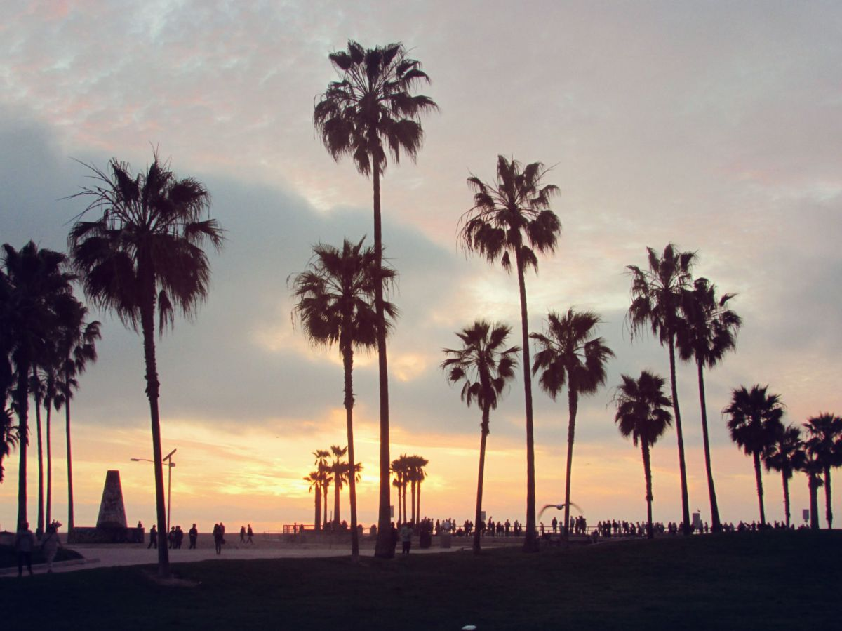 Venice Beach. Like a dream I remember from an easier time...